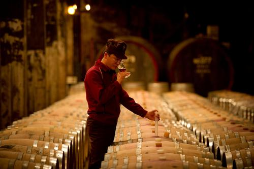 Suntory Tomi no Oka Winery - Chief Winemaker